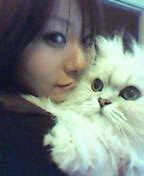 愛猫ちゃんっ